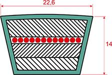 Ремень приводной клиновой С(В)- 5600 22,6*14 мм